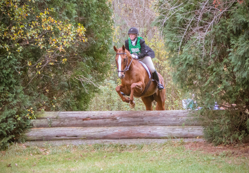 The New England Hunts Championship Hunter Trials will be held on Sunday, October 20, 2019 and will be hosted by the Myopia Hunt Club in South Hamilton, MA. -