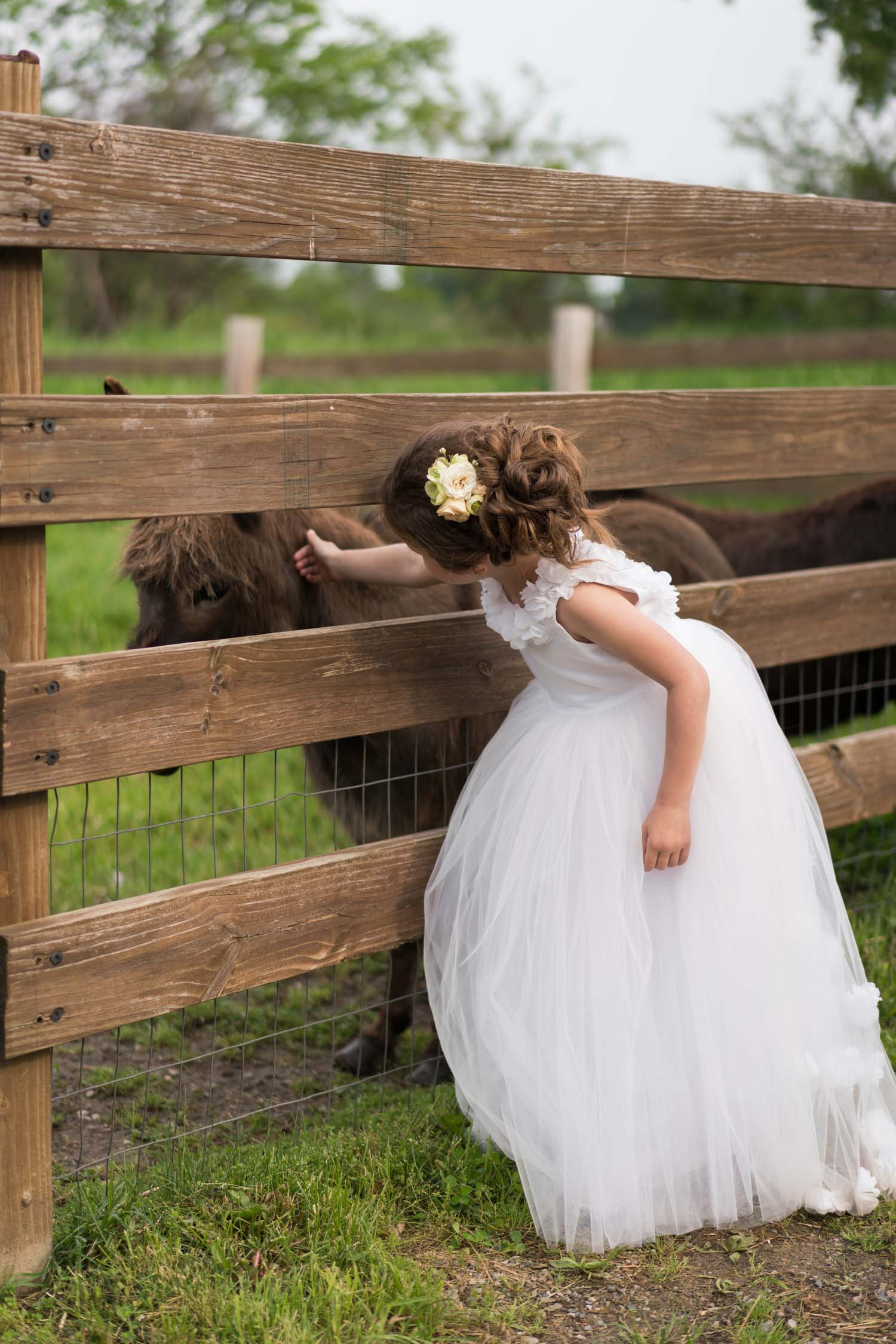 flower girl with donkey
