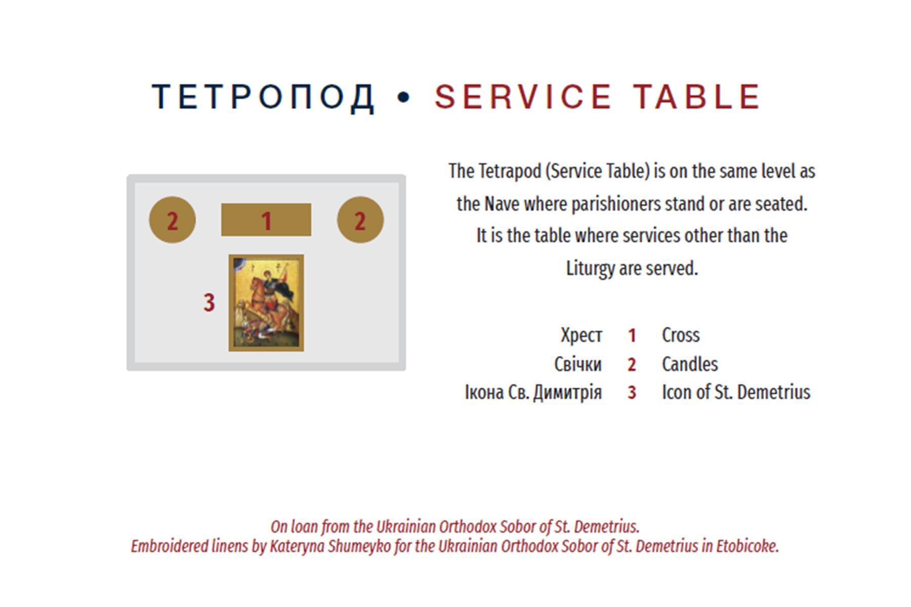 3a. Tetrapod Card.jpg