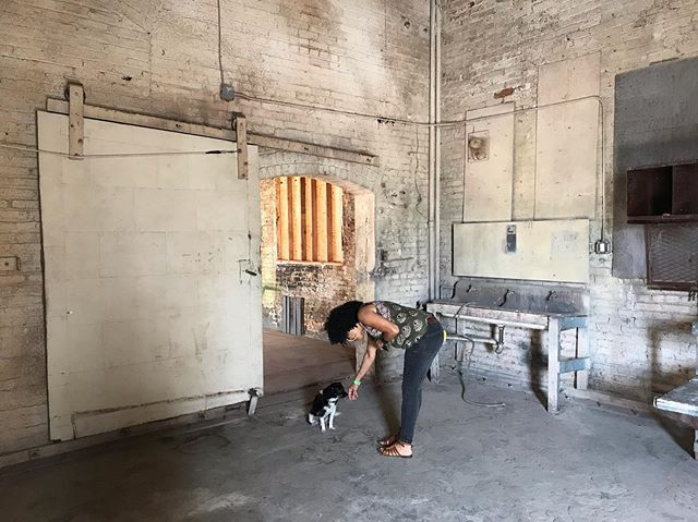 Vibe Manager reporting for duty! . . . #Walkthrough #StudioDog #ArtDepartment #Production #lacystreetproductioncenter #LosAngeles #California #Location #LocationScout #Stage #Studio #MovieStudio #Warehouse #Industrial #Factory