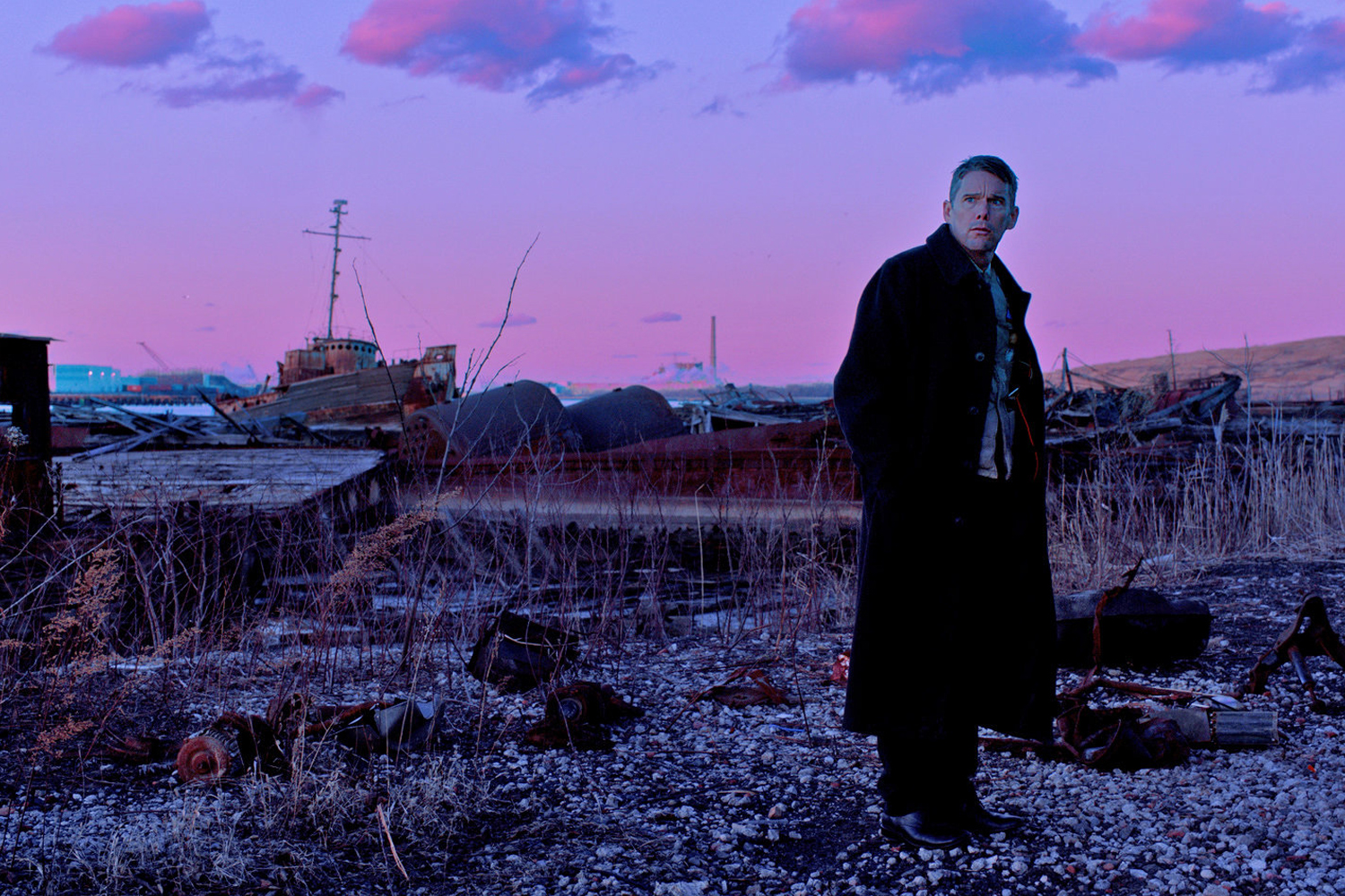 First Reformed - Paul Schrader's best film in years, First Reformed stars the perennially underrated Ethan Hawke in a masterful performance as a former military chaplain mourning the death of his son, tasked with harboring an explosive secret. First Reformed touches on heavy themes with sensitivity as well as propulsiveness - a gripping meditation on depression, faith, and in an unlikely turn, the environment.