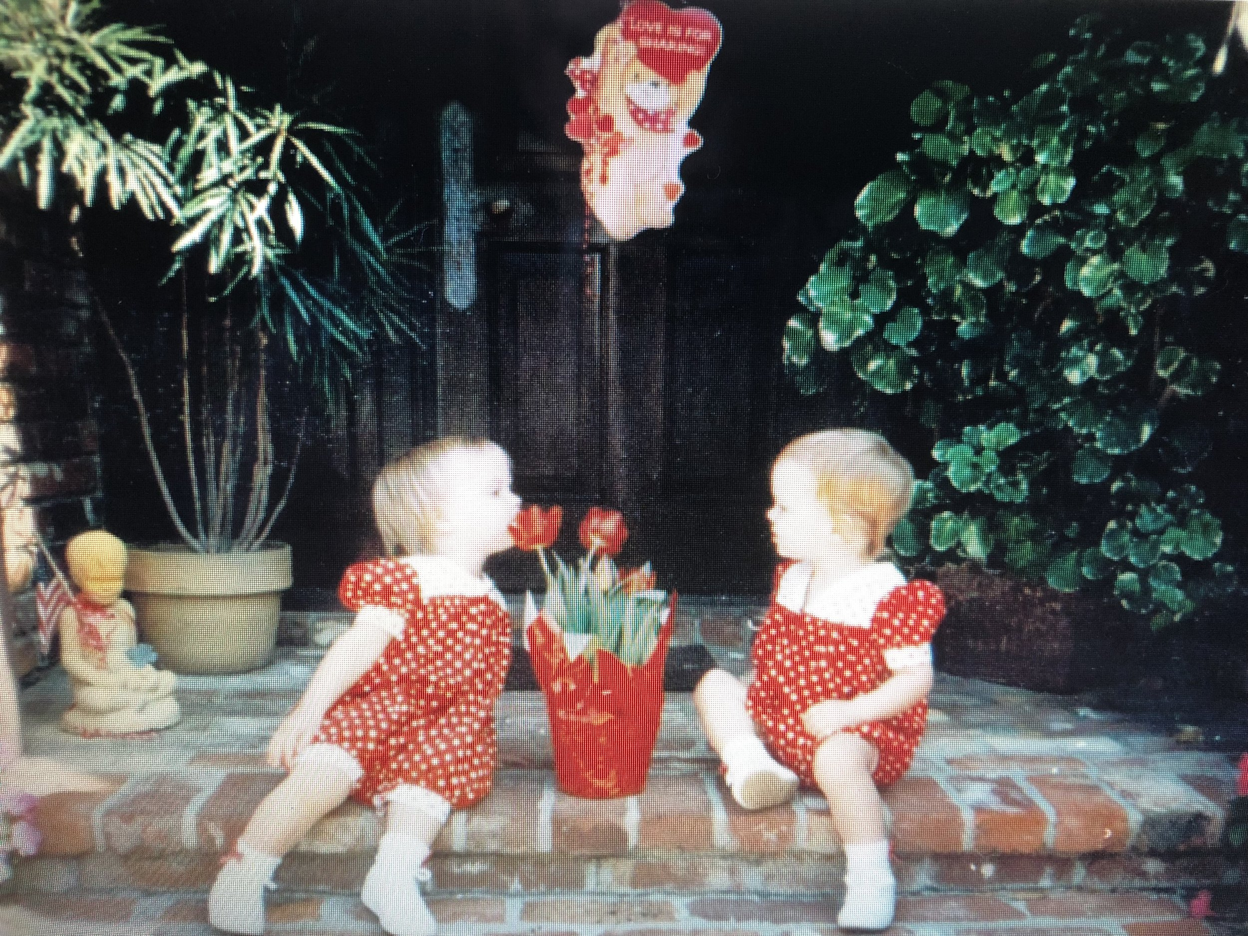 Valentine's Day circa 1992 where my sister attempted to EAT a tulip
