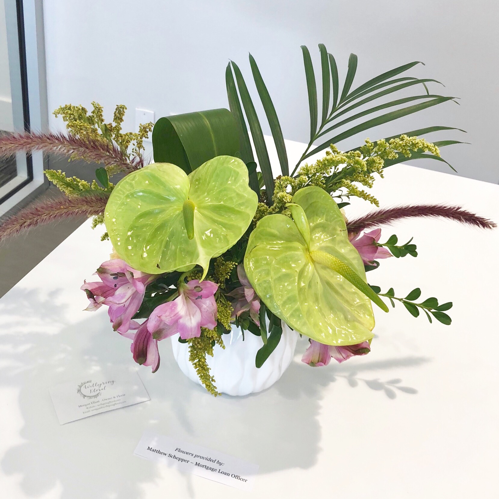 Tropical Green Anthurium