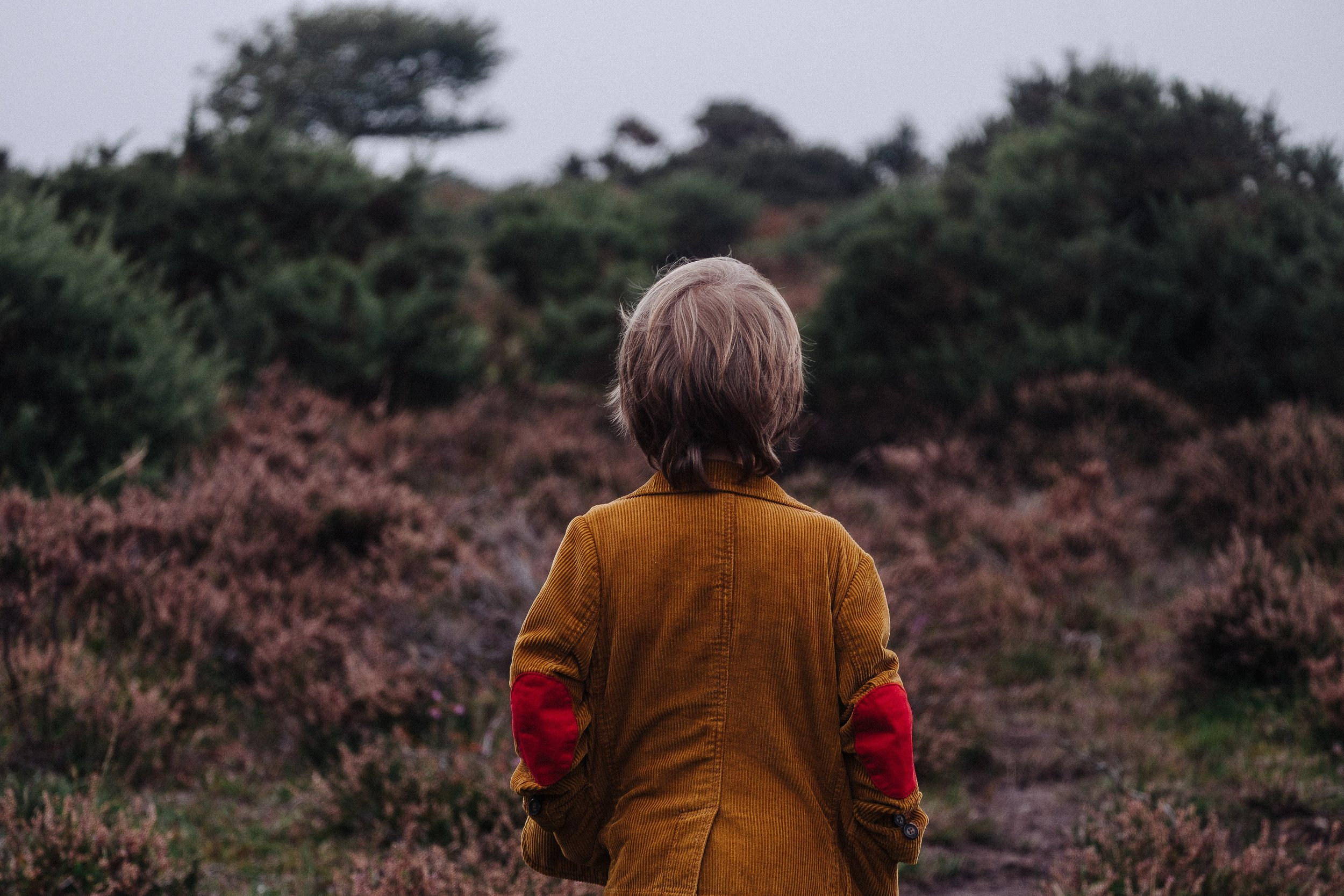 Boy in jacket looking out at a forest