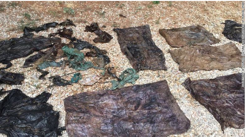 El Valle Wildlife Center found 64 lbs of plastic waste on a young sperm whale.
