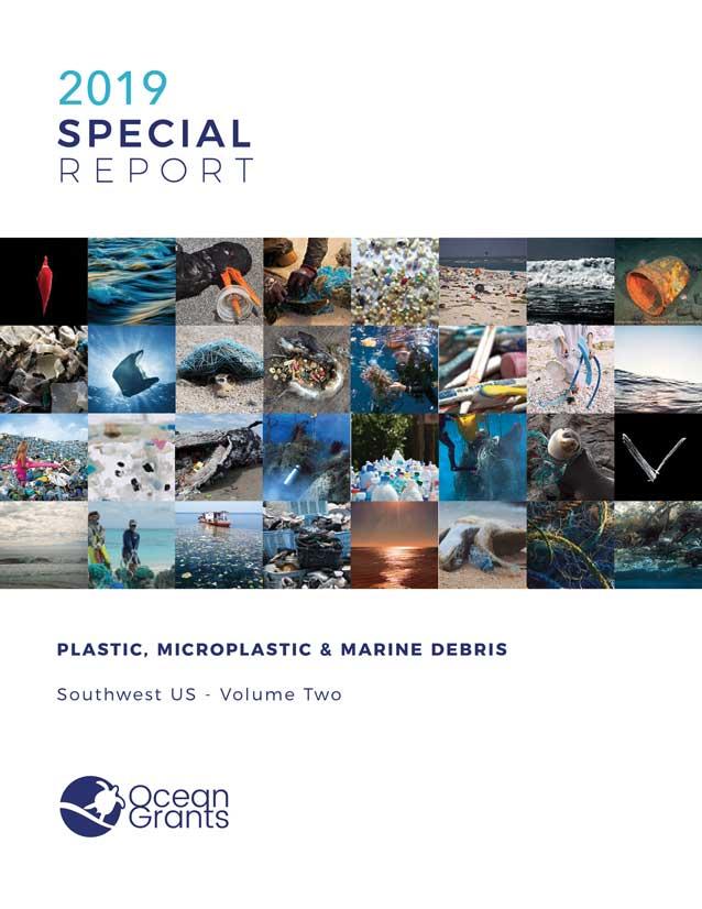 OG-2019-Special-Report-Volume-2_reduced.jpg