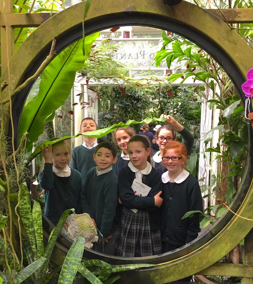 Conservatory_Flowers_crop.jpg