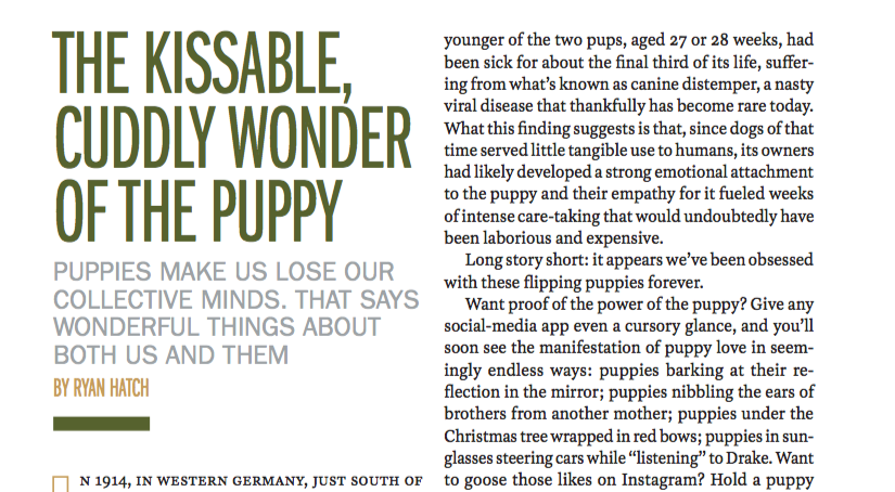 Science of Puppies — Time
