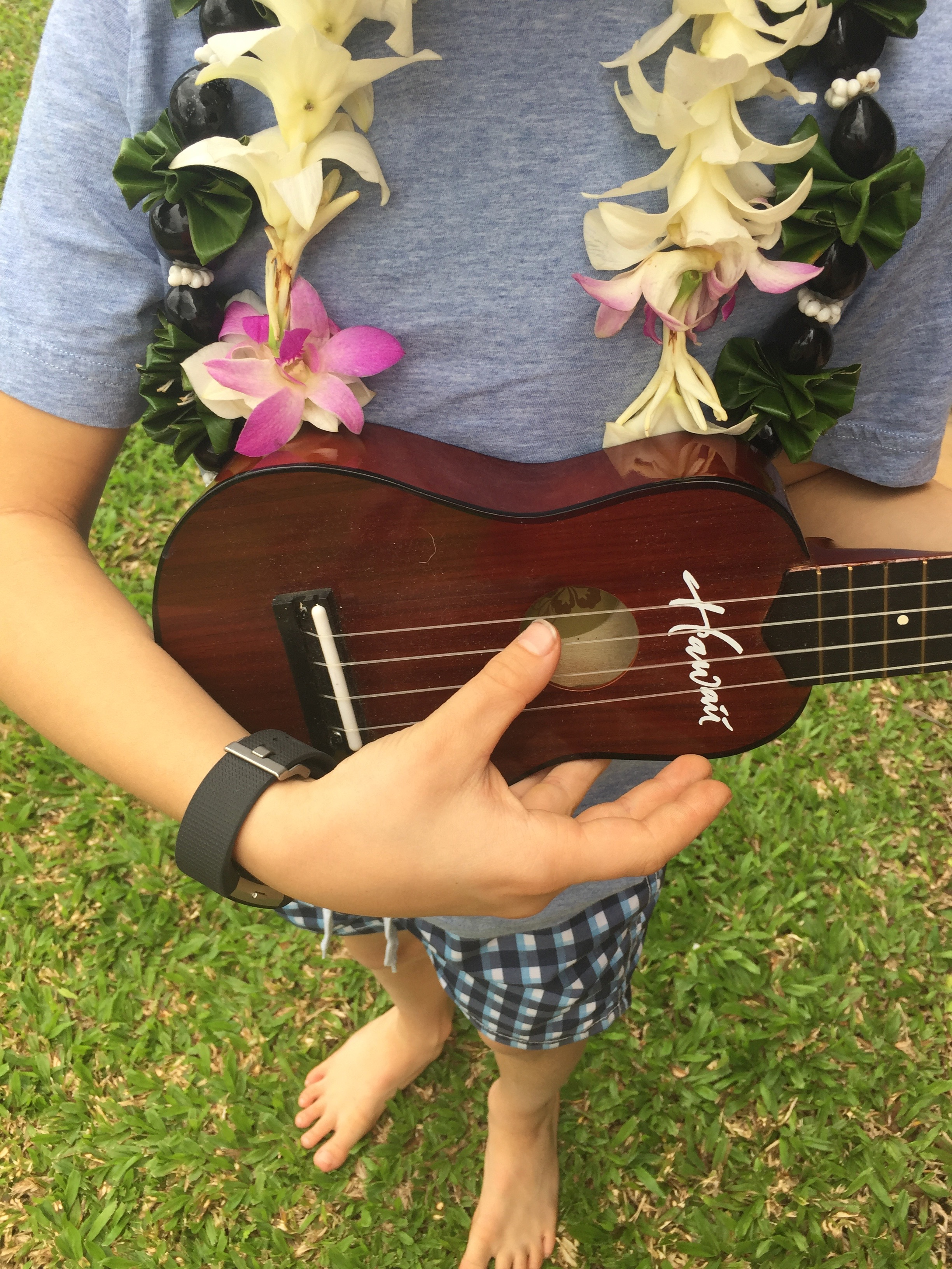 Ali Hedin | Oahu Travel Guide