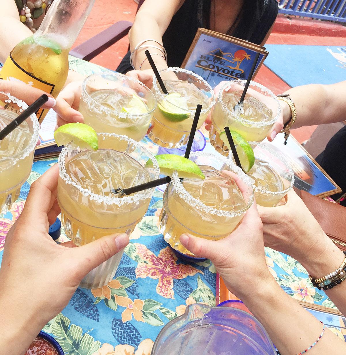 Ali Hedin   Palm Springs Margaritas