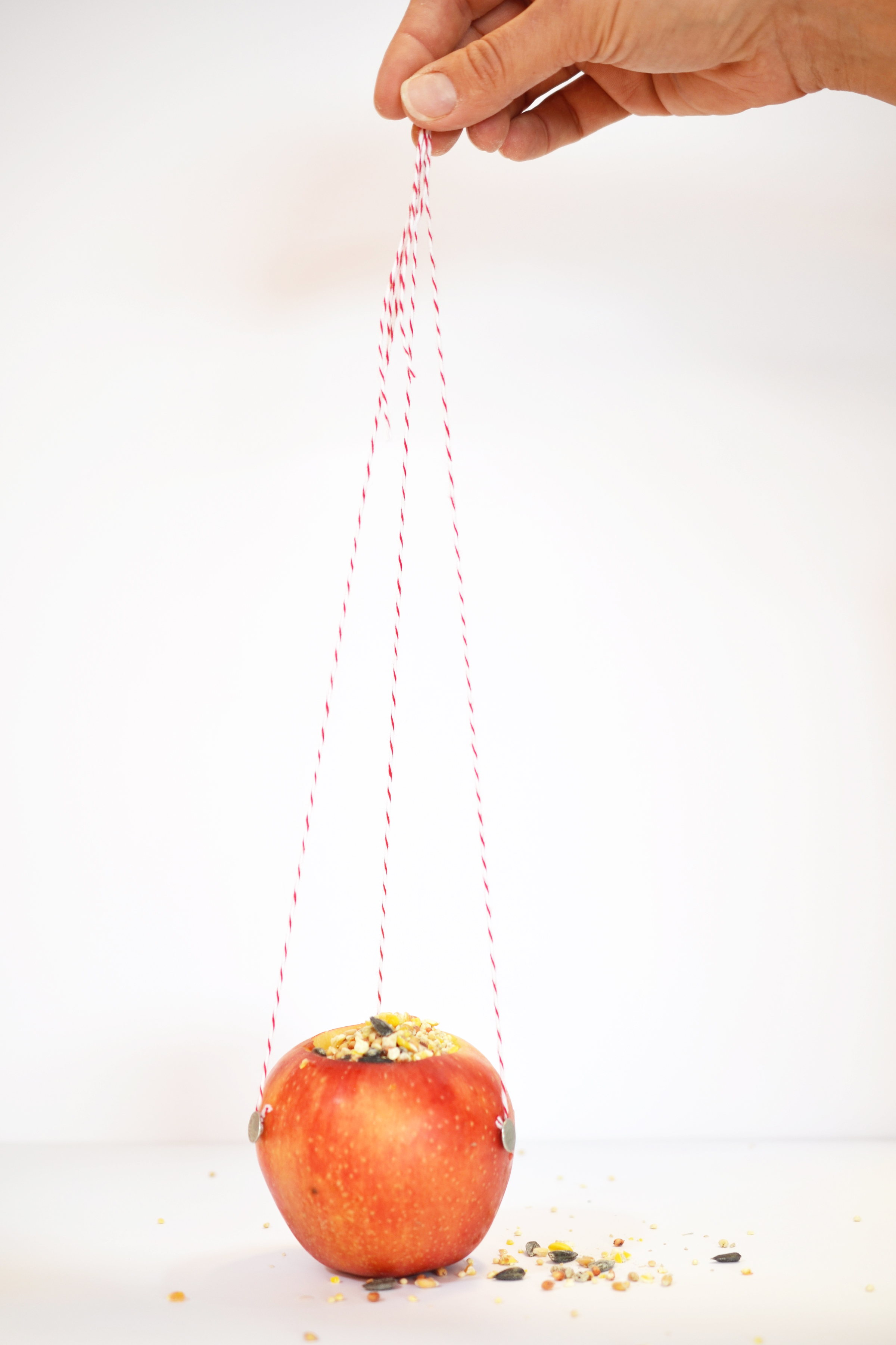 Hedin Party Apple Craft Finished.jpg