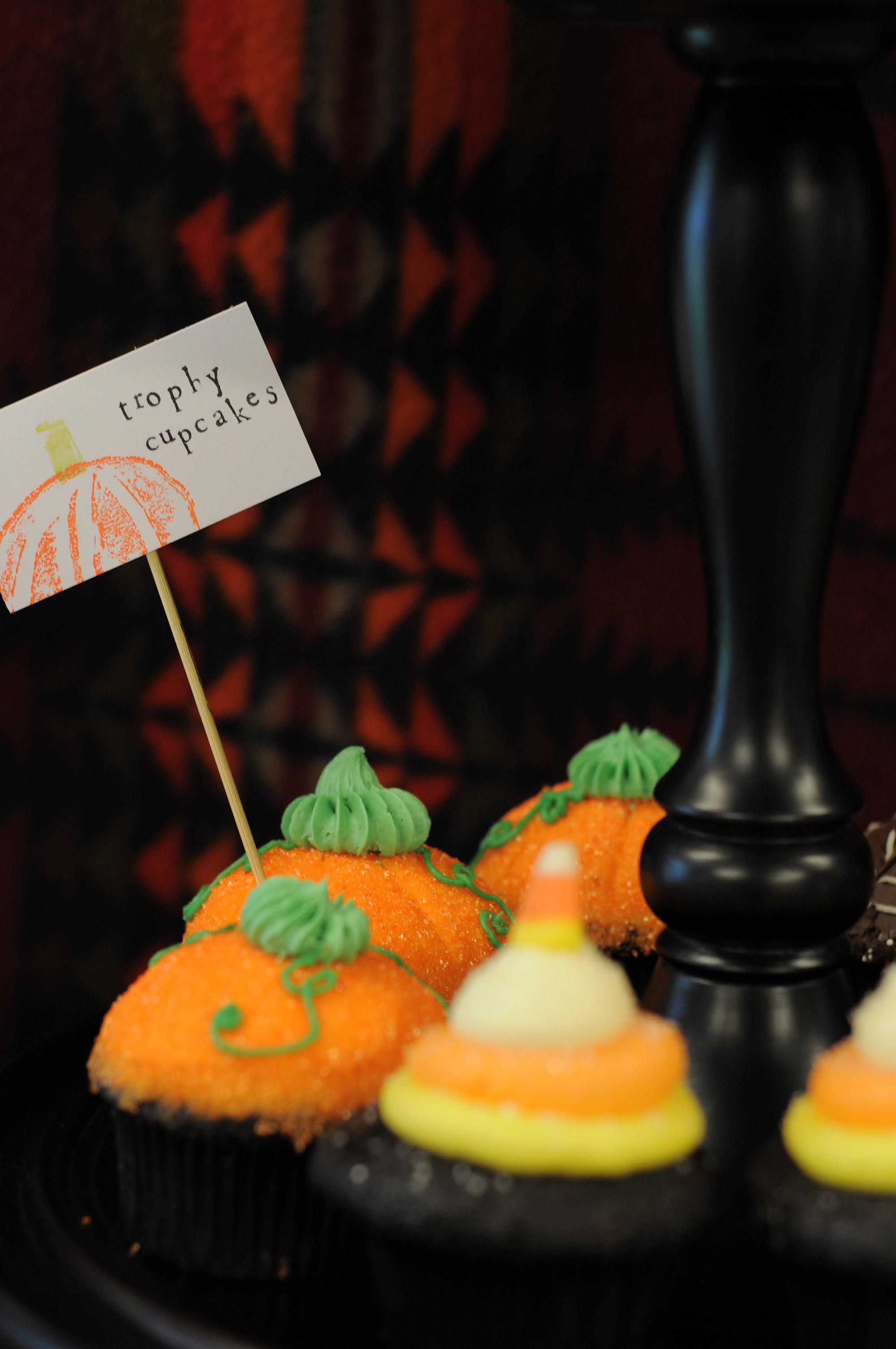 Hedin Pumpkin Patch 2.jpg