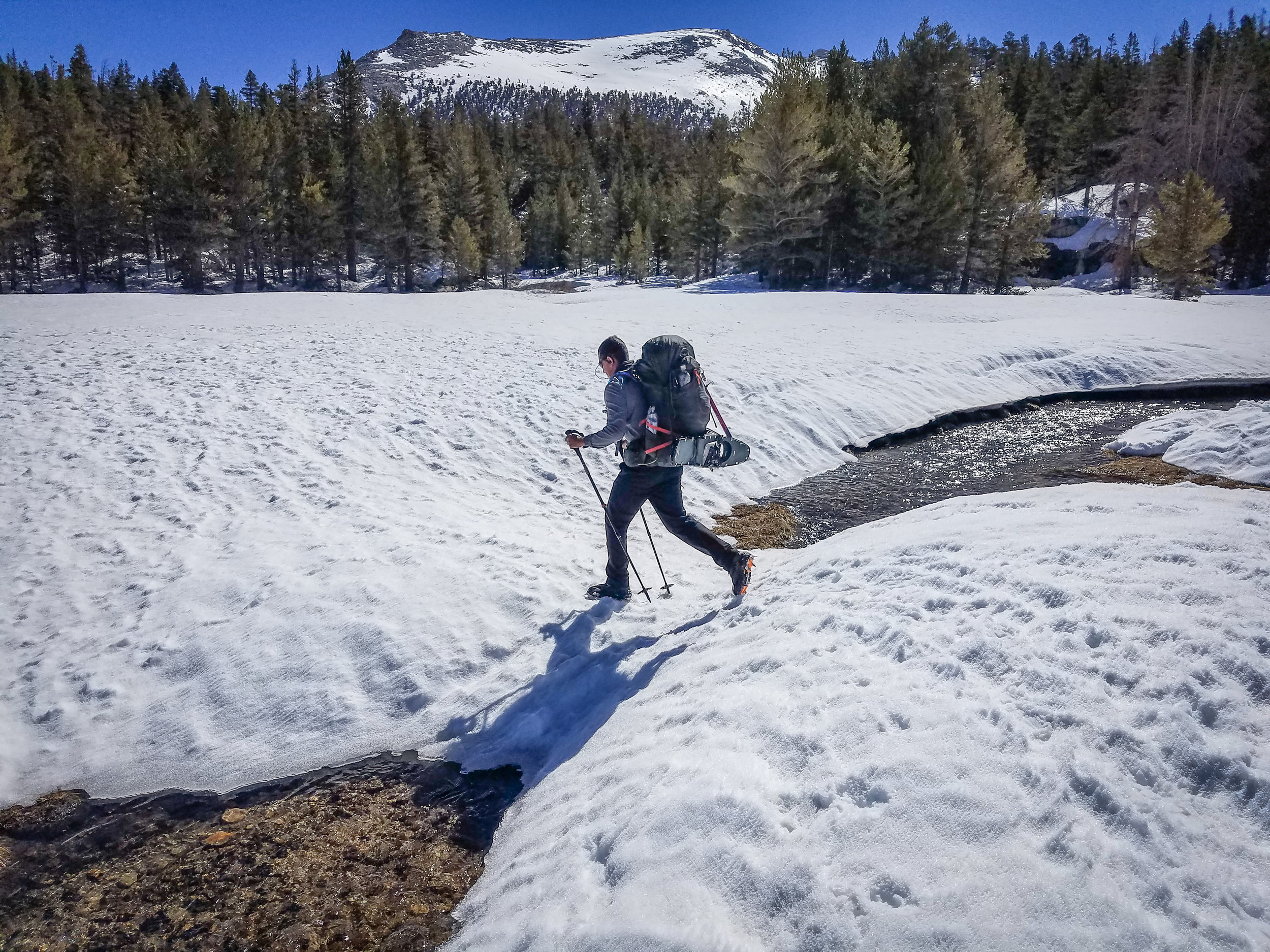 Snowbridges. The gift of the early season.