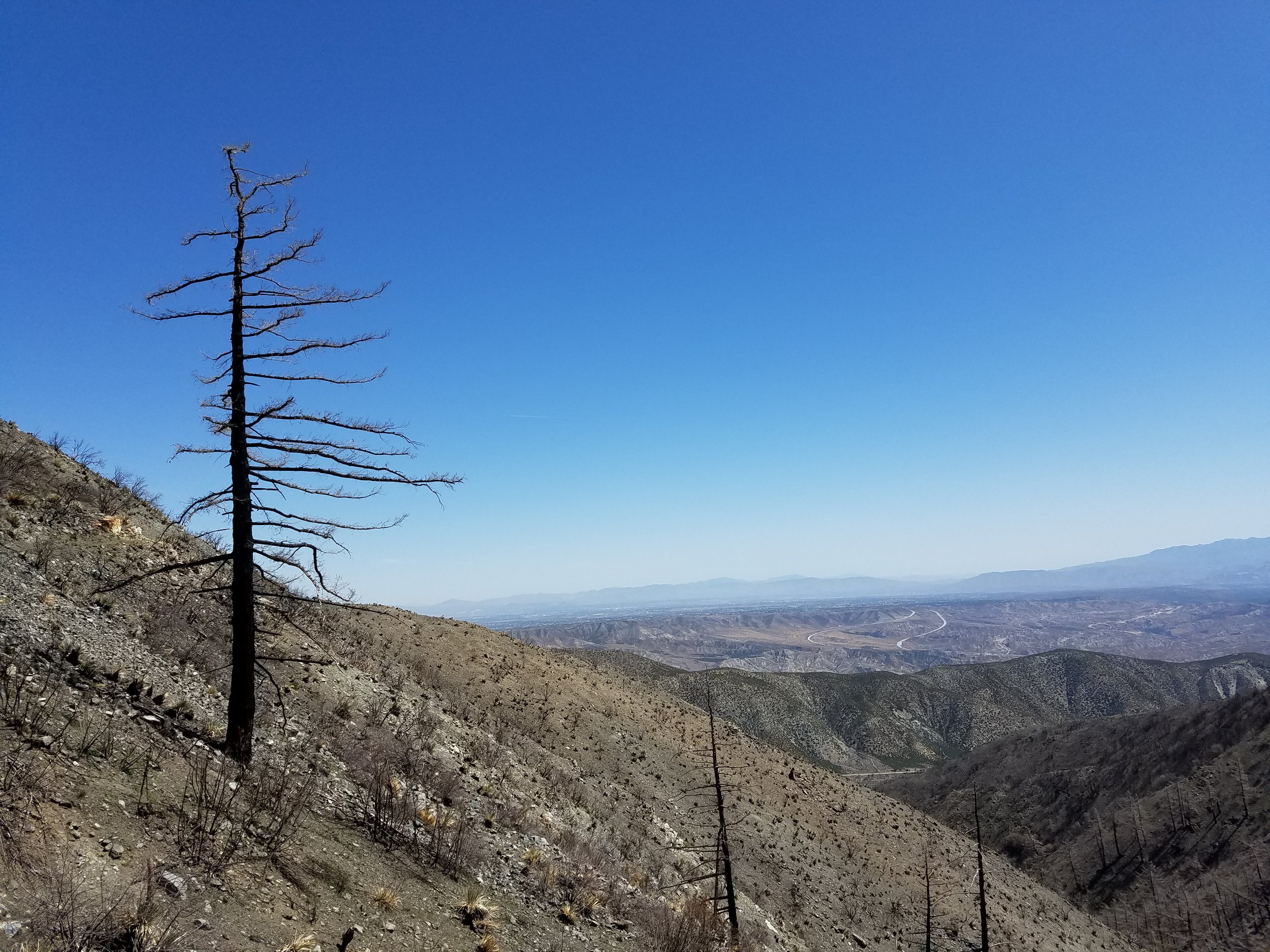 Views along the uphill trudge toward Wrightwood.