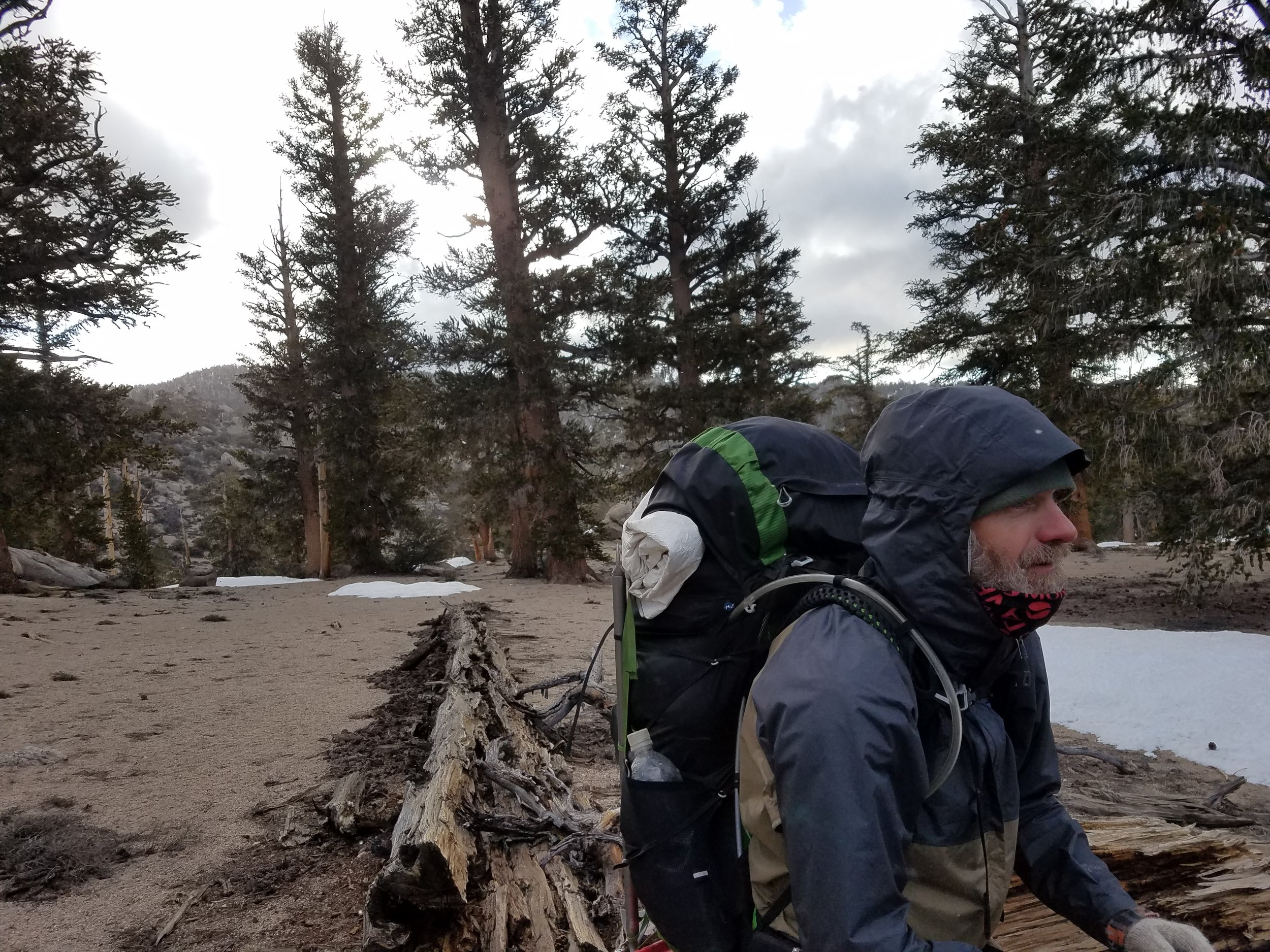 Road Dog bundled up for the cold morning hike up to Trail Pass.
