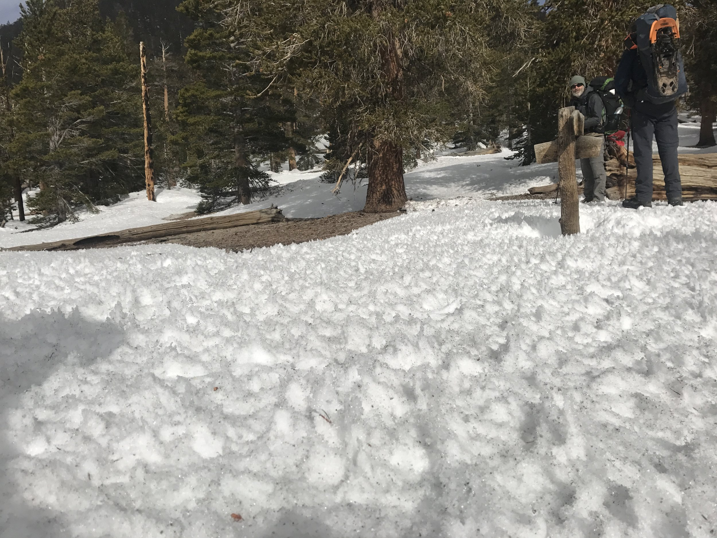 Cool snow texture at Trail Pass. Baby suncups??