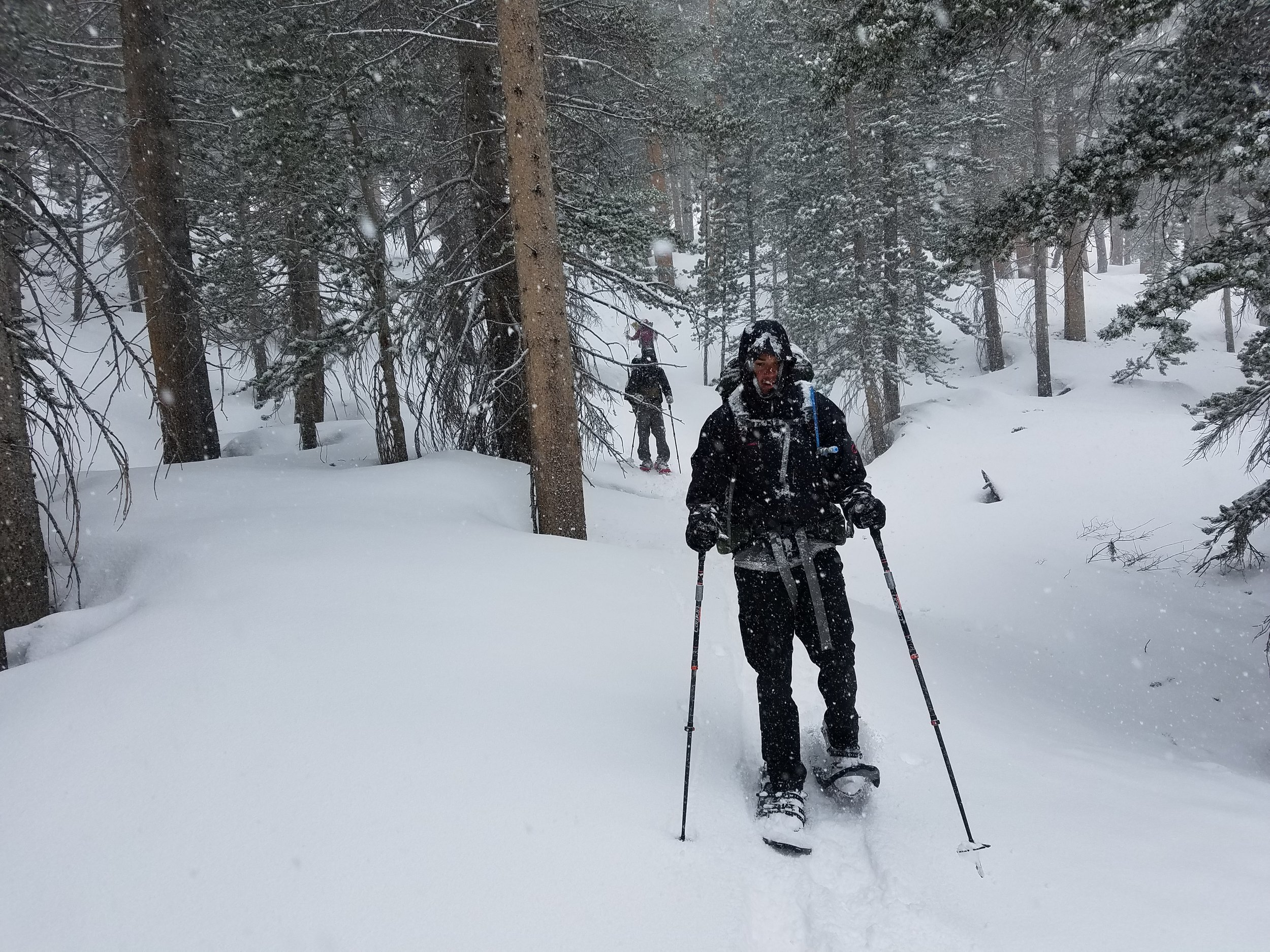 Headed out of the storm on the east side of Cottonwood Pass.