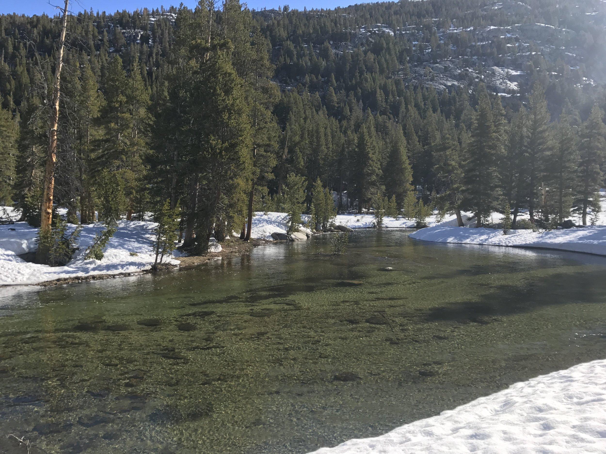 Beautiful Evolution Creek.