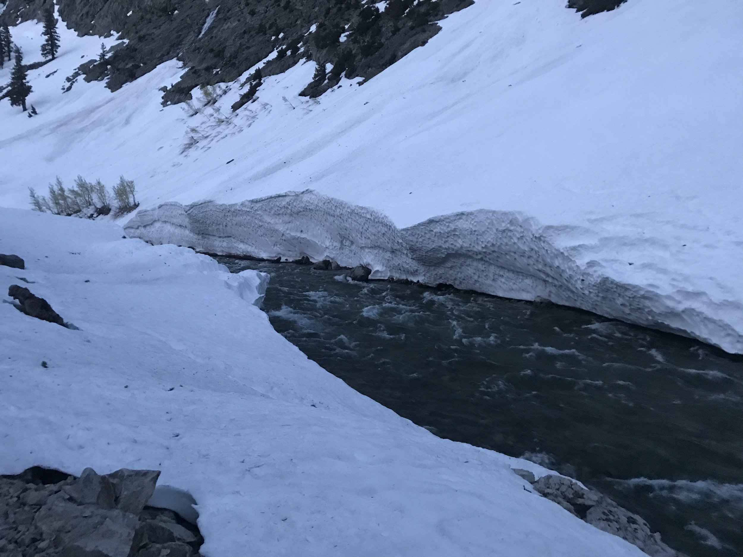 South Fork of the San Joaquin and the remnants of big avalanches through the previous winter.