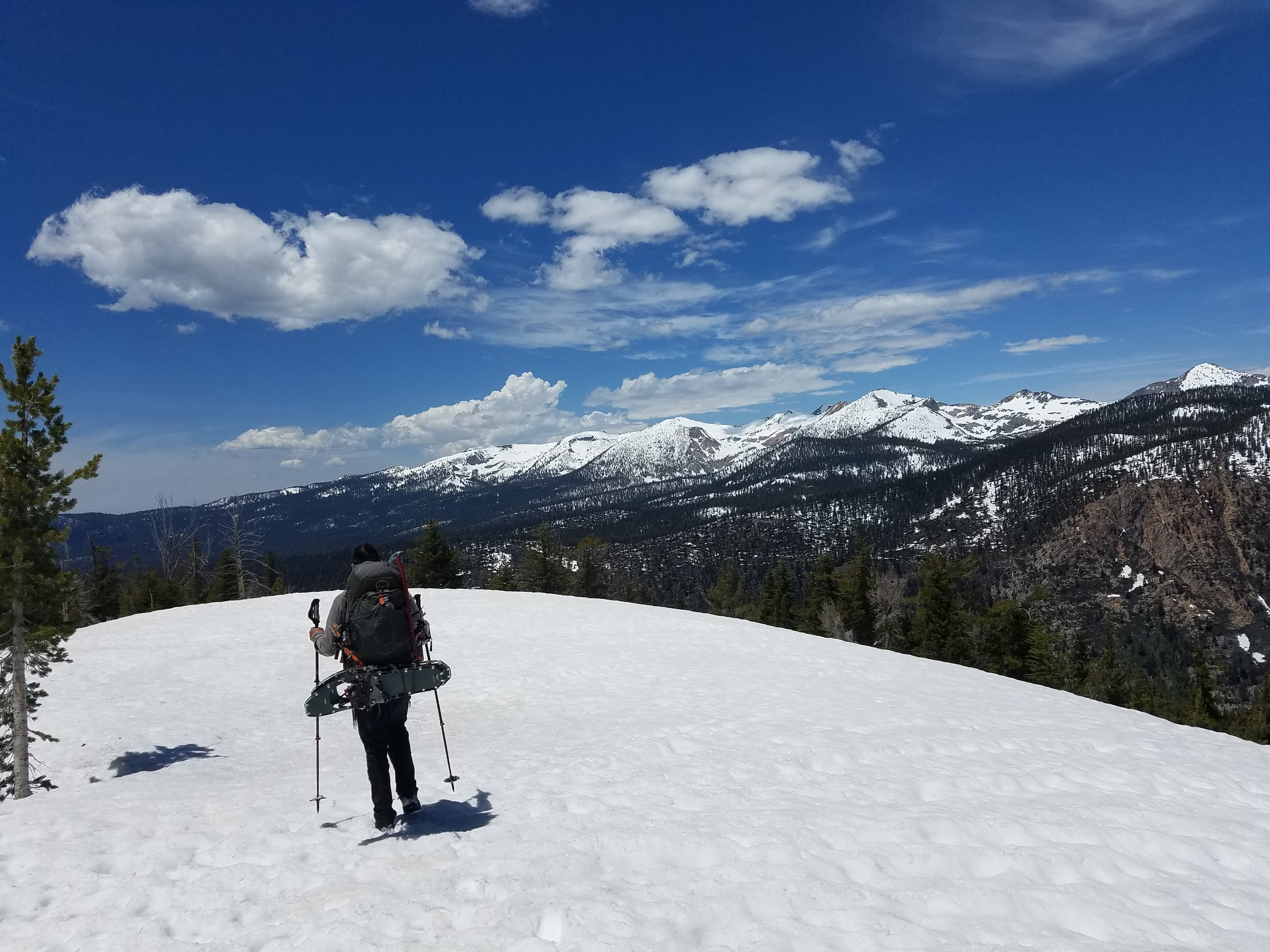 On top of Bear Ridge before the steep descent to camp.