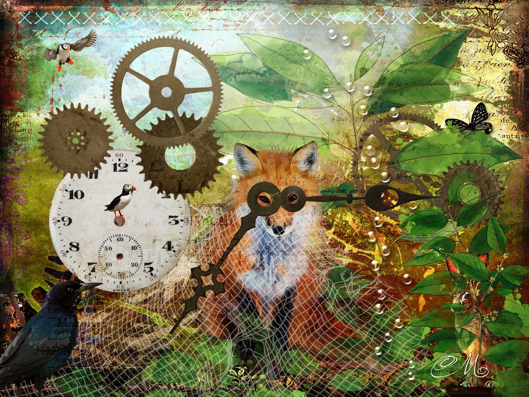 Melinda Isachsen JANIS Photography & Fine Art Photo Artistry Fox and Time