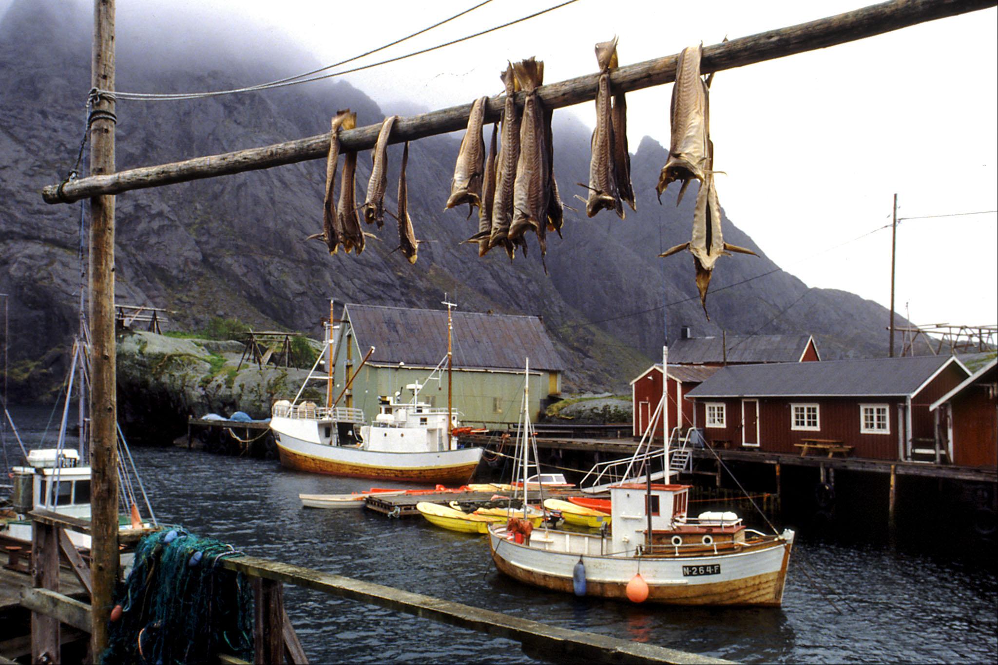 Melinda Isachsen JANIS Photography & Fine Art hanging fish boats Lofoten Norway
