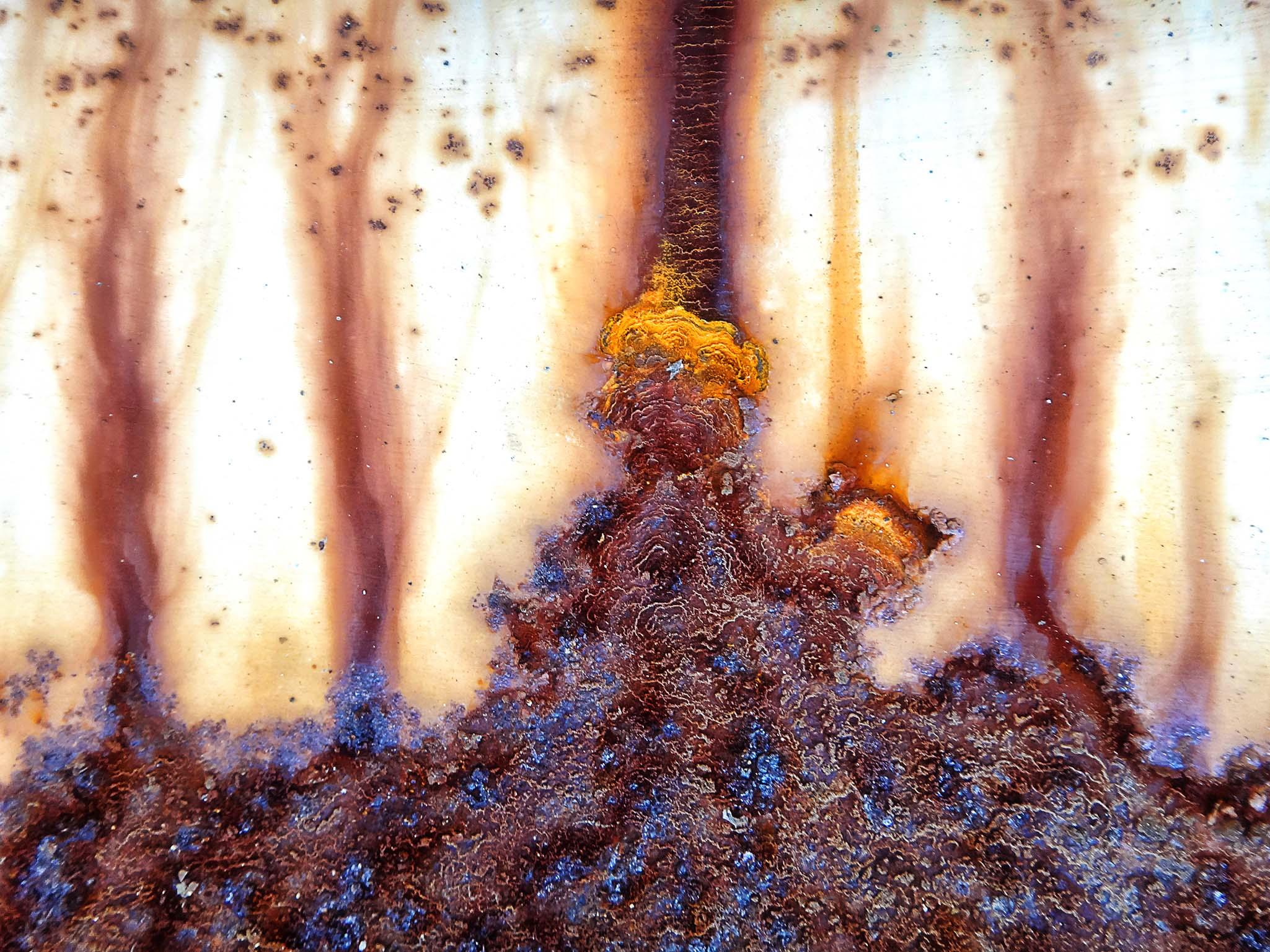 Melinda Isachsen JANIS Photography & Fine Art rust