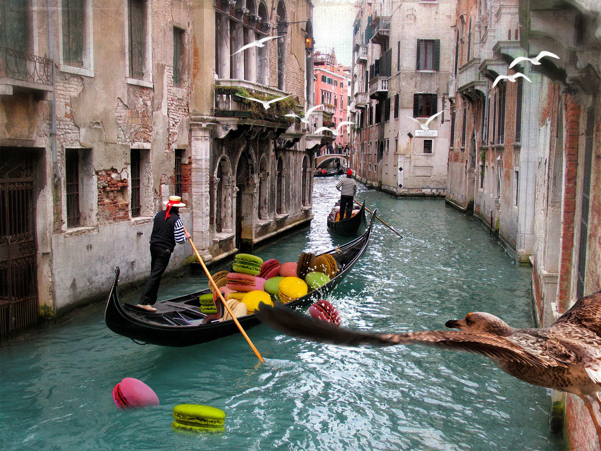 Melinda Isachsen JANIS Photography & Fine Art Transporting Macarons in Venice Italy