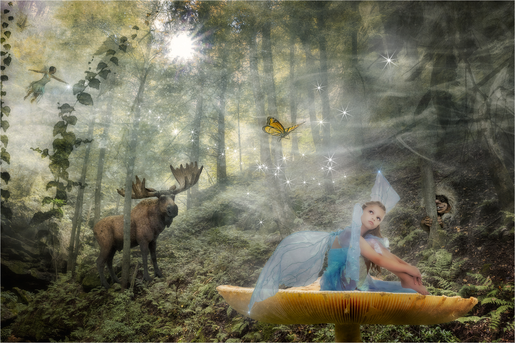 Melinda Isachsen JANIS Photography & Fine Art - Things in the Forest