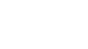 WSDA+80.png