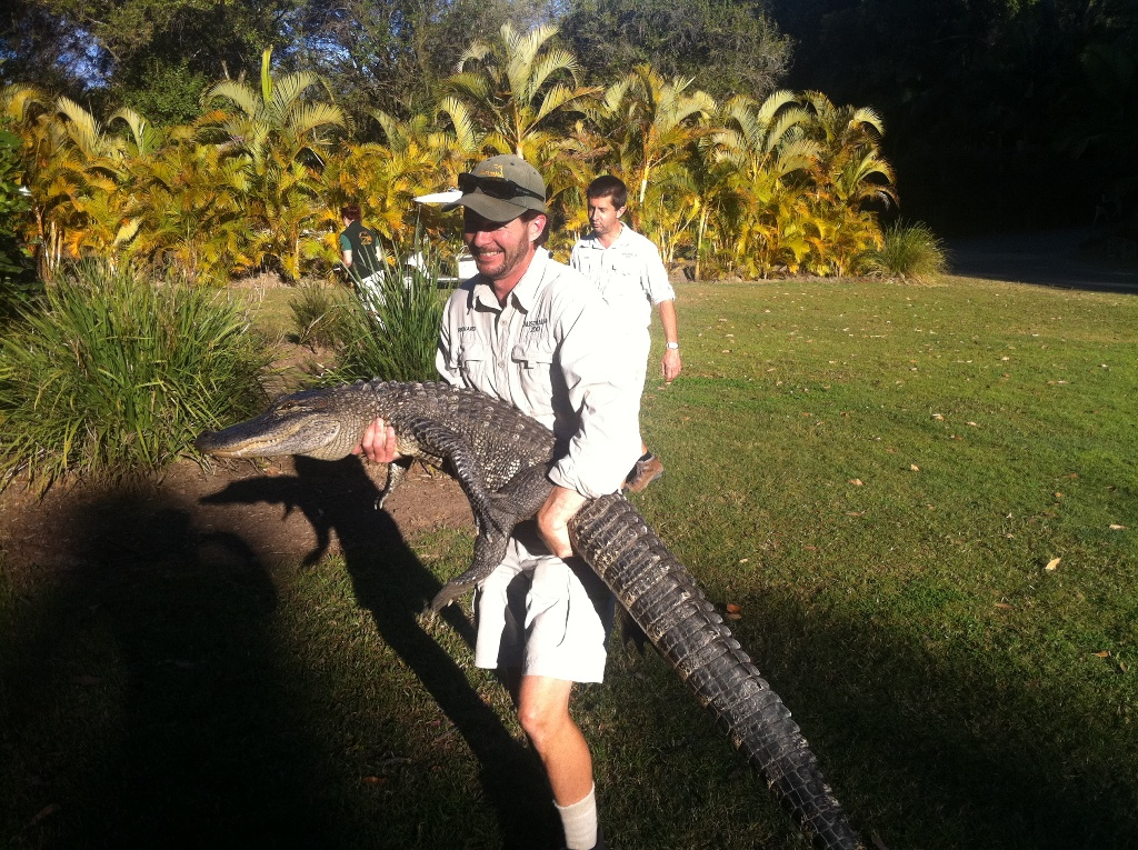 Steve-Irwins-Wildlife-Warriors-2.jpg