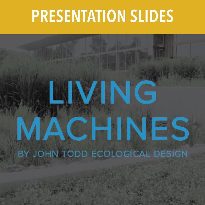 Living Machines shop thumbnail.jpg