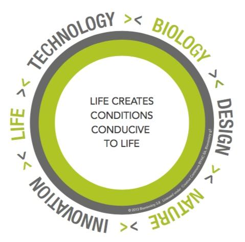 biomimicrydefinition.jpeg