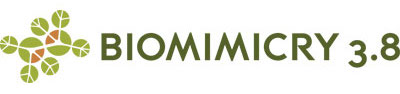 b38 horizontal logo.jpeg