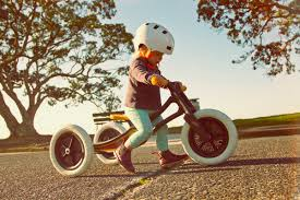 wishbone bike.jpg