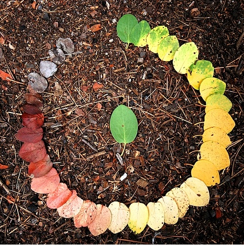 The growing influence of the circular economy in New Zealand (1).jpg