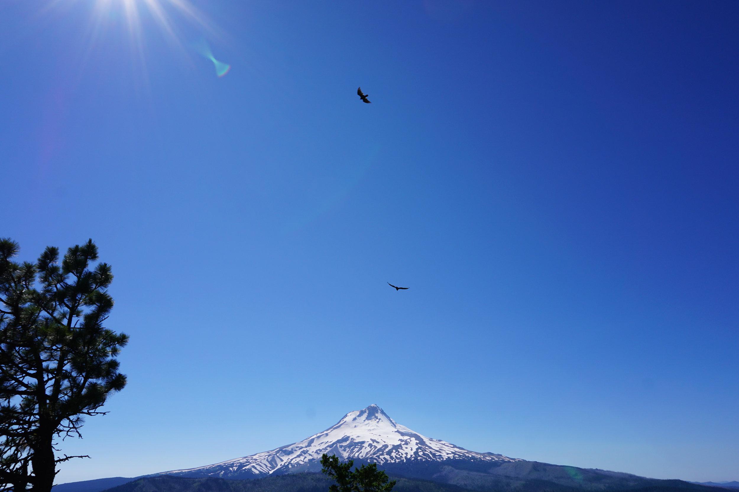 Floating above Mt. Hood