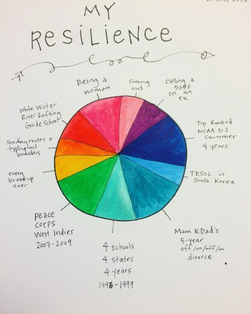 Resilience Pie 7.2017