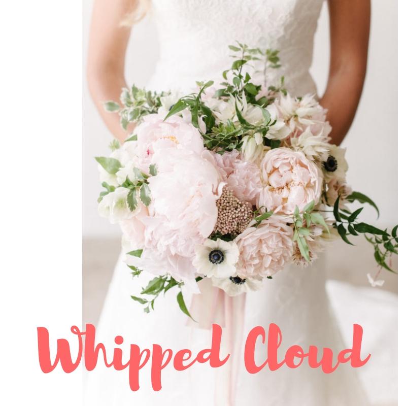 Whipped Cloud 2.jpg