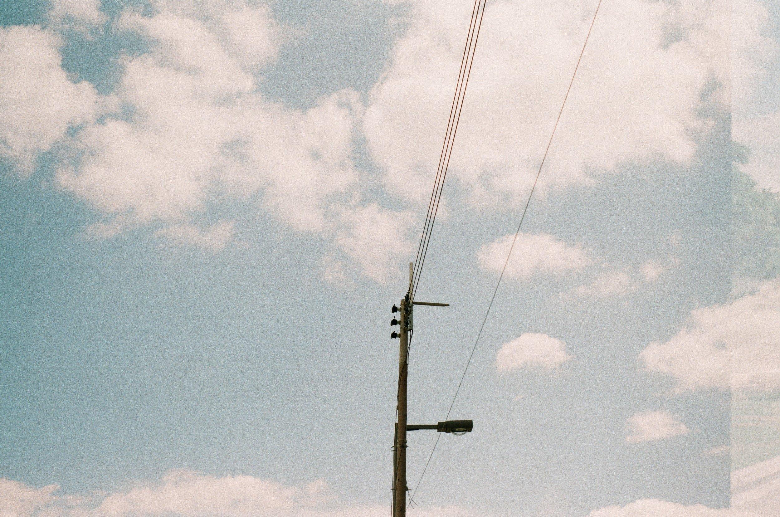 0535-24 (pig fav).jpg