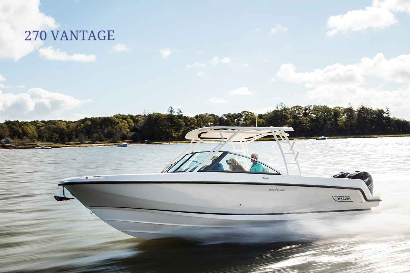 Boston-Whaler-270-Vantage-Gallery-2.jpg
