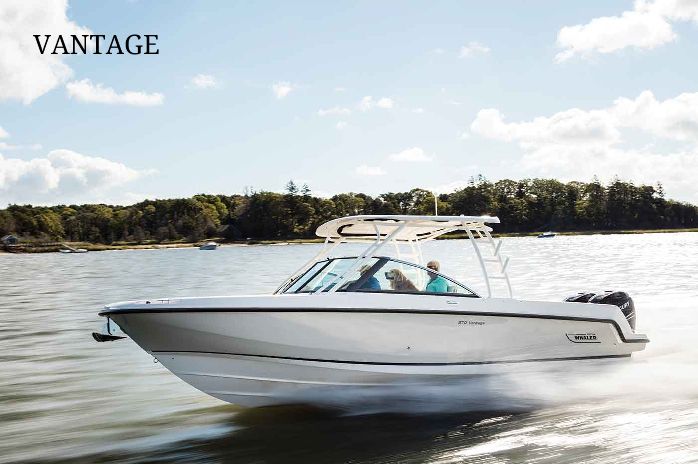 Boston-Whaler-270-Vantage-Gallery-2 (1).jpg
