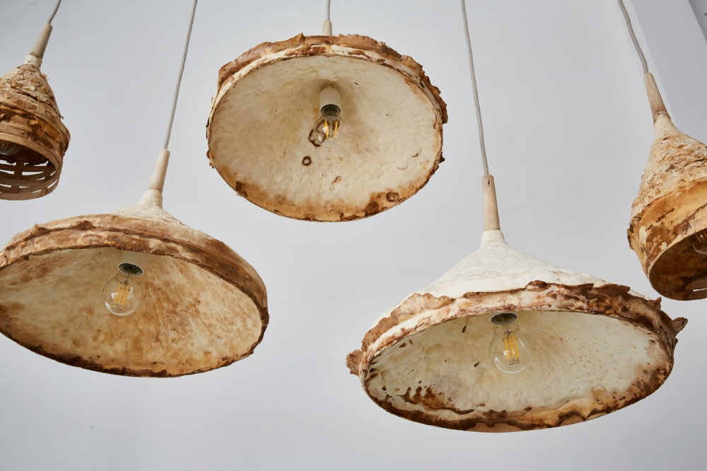 mycelium-timber-london-design-festival_dezeen_2364_col_3.jpg