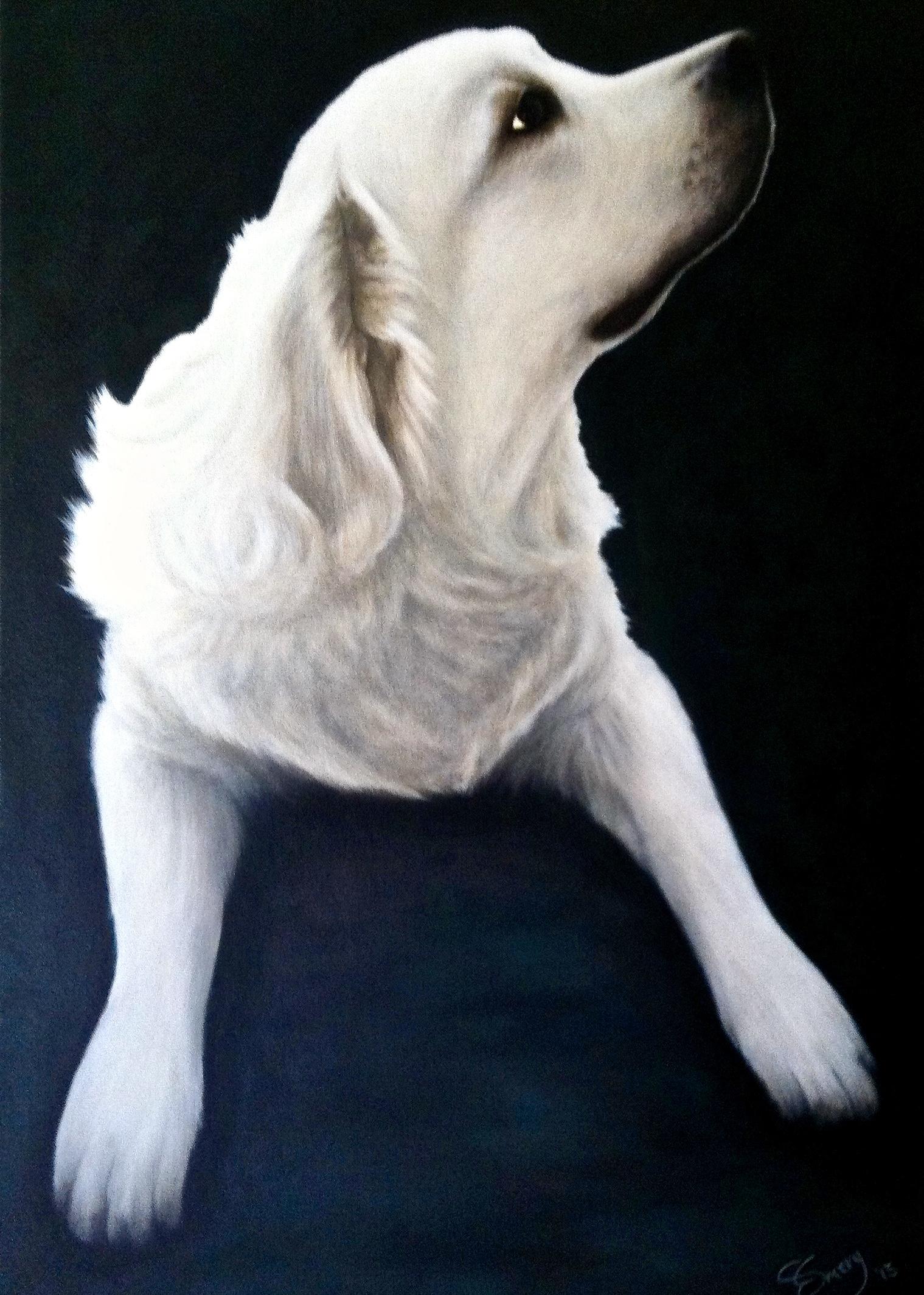 Leo -  2014 acrylic on canvas 76cm x 102cm (sold)