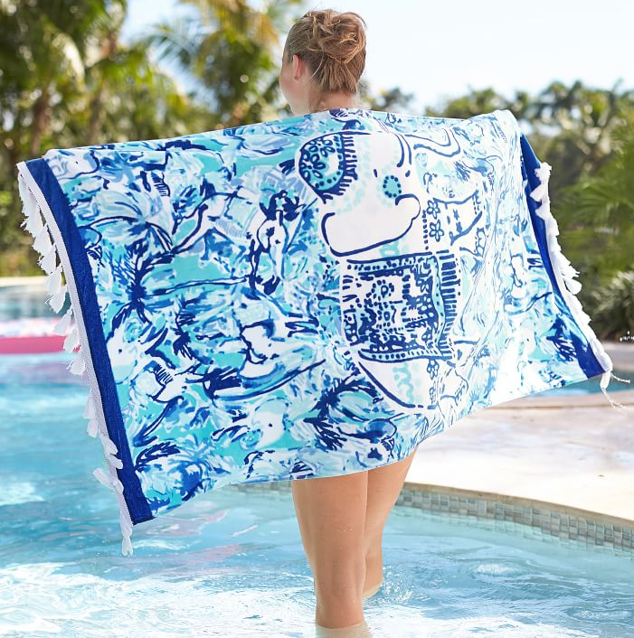 Elephant Appeal Beach Towel