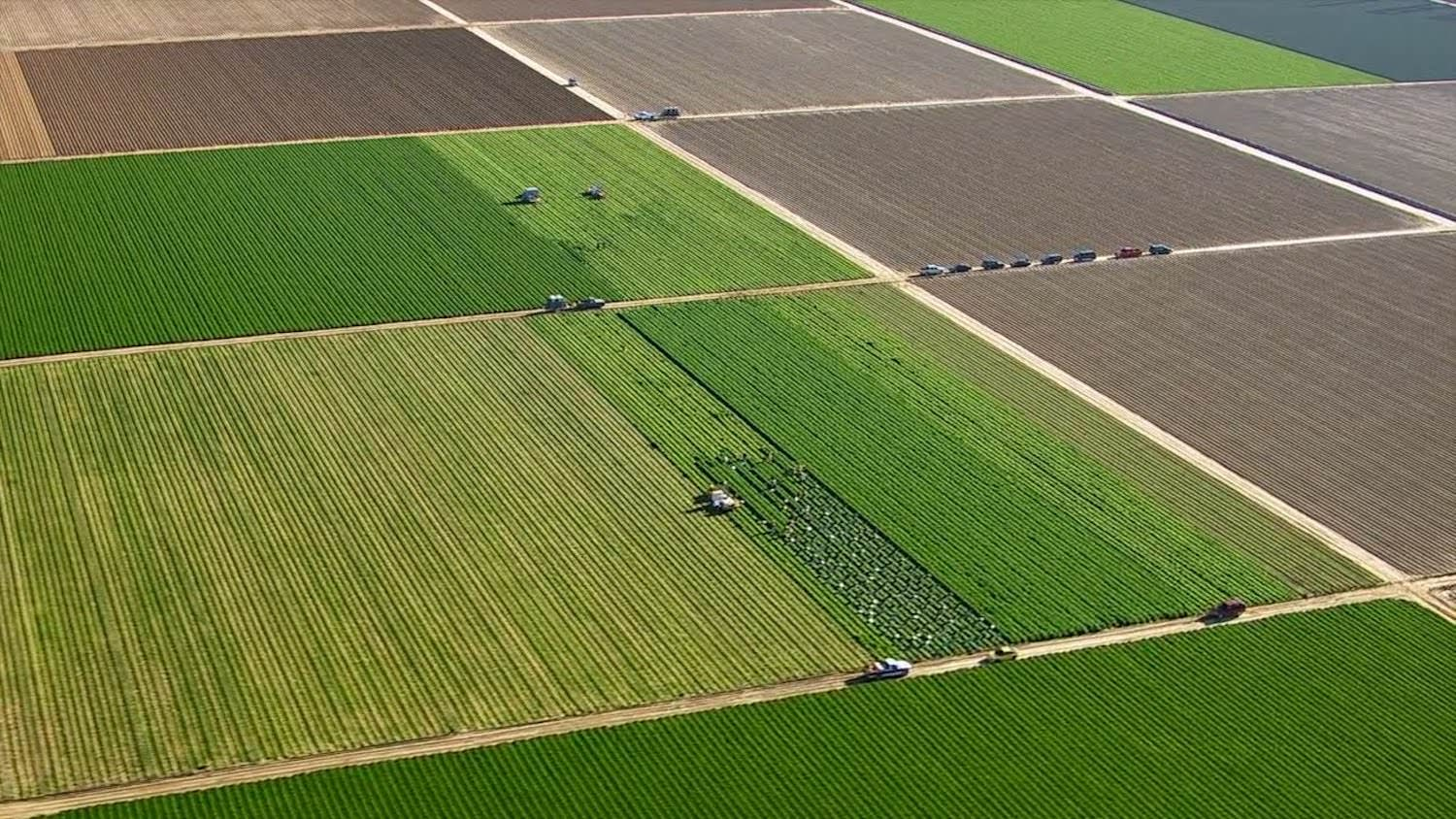 Aerial view of agriculture