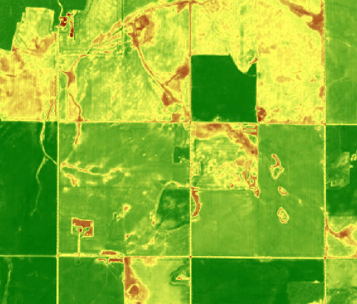 High Res Satellite - NDVI