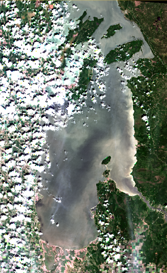 July 5 2019. All clear (in most areas)! The small algal blooms evident in the last image in and near lagoons have subsided as water movements in-and-out have increased with winds and mixing. Some local blooms persist in the area of the Brokenhead River and near Patricia Beach. Winds resuspended sediments along the clay shores and shallow flats on the east side of Traverse Bay. Modified ESA data.