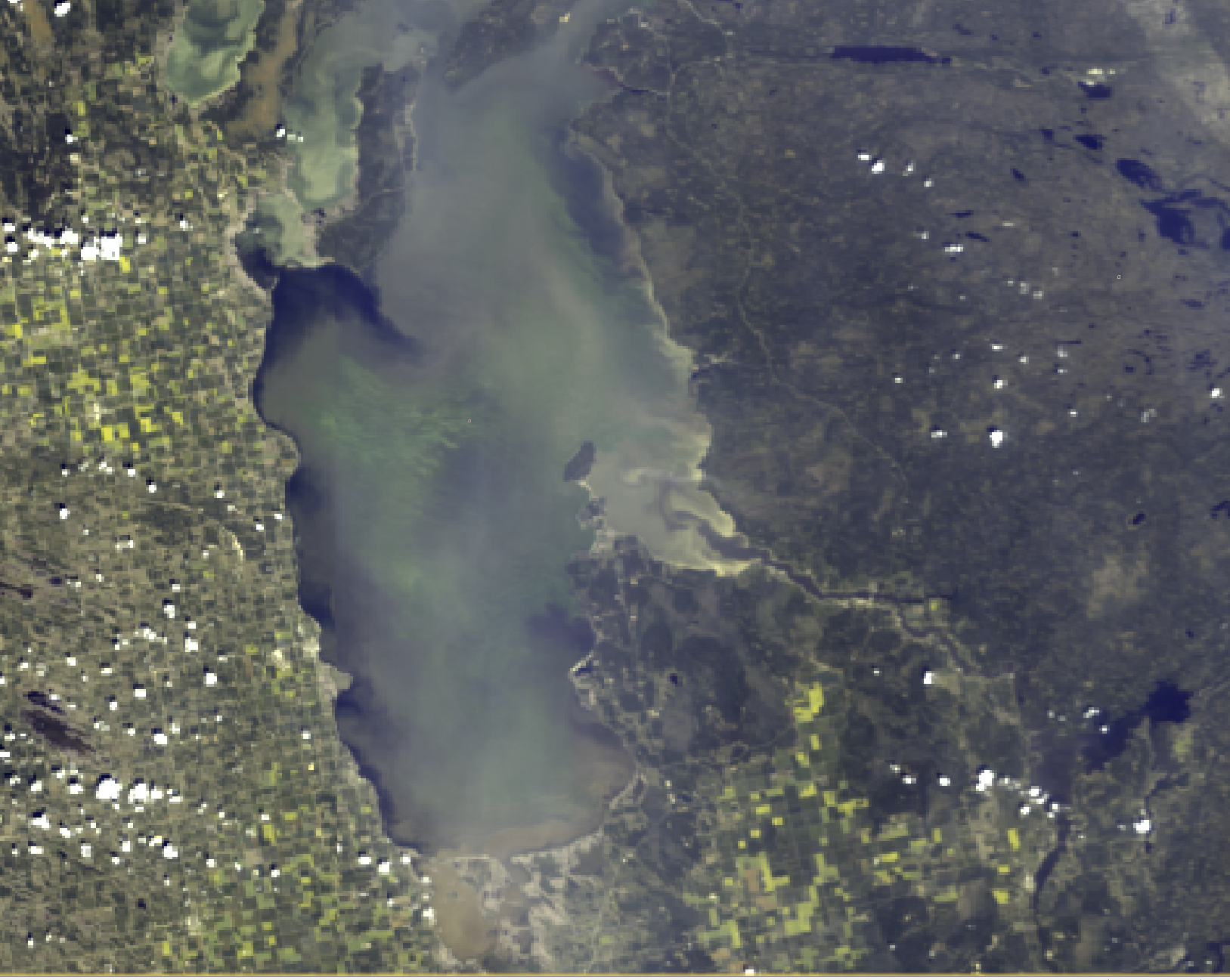 """July 23, 2019 - We've been a bit unlucky with cloud cover lately when the high resolution satellite passed over the lake. Instead, here is a lower resolution image (300 m) taken from a different satellite that shows the large extent of algal blooms in the south basin this week. This image shows extensive offshore blooms in green. These blooms can be seen near the mouth of the Red River all the way to Manigotogan River/Black Island area. The offshore booms extend onto to the east beaches shoreline in many areas including Grand Beach, Hillside Beach, and Victoria Beach due to westerly winds. Lester Beach, just north of Grand Beach had better conditions, shown here as darker water which has less algae and sediment. The west side has favorable conditions for recreation due to an up-welling event shown as darker water all along this shore. During up-welling, the offshore winds push the surface water away and a return current flows along the bottom of the lake (where floating algae are not found) and seeps up onto the west shore. The muddy brown plume from the Red River is visible near the mouth and in the Patricia Beach area. The """"tea-stained"""" water from the Winnipeg River plume can also be seen entering Traverse Bay. The bright areas in the bay show where high concentrations of sediment were re-suspended from the shallows by waves. Sediment at the surface of the water reflects sunlight back to the satellite strongly."""