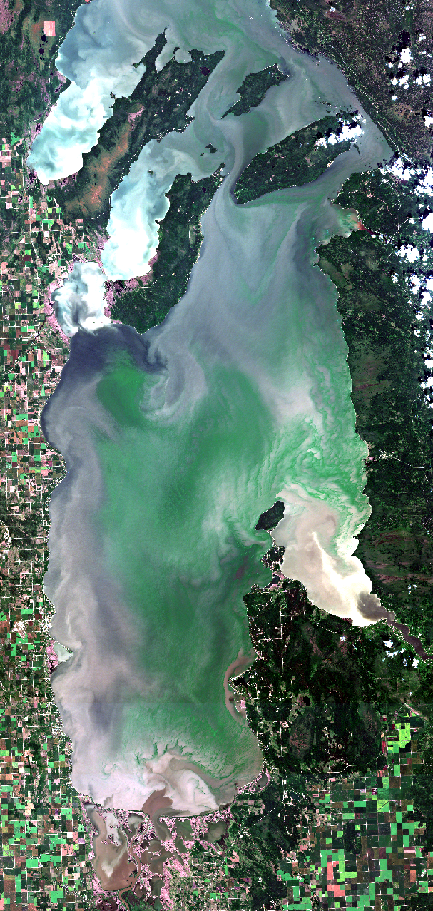 July 30, 2019. After persistent westerly winds there is little reprieve from the blooms on the East Beaches. We cruised the shoreline from Elk Island to Lester Beach on July 27 and saw more blooms, including extensive blooms of blue-green algae, than we've ever seen on the lake. Click on this high resolution image to see the native satellite data and discuss this with your peers and political leadership (currently uploading image). Modified ESA data.